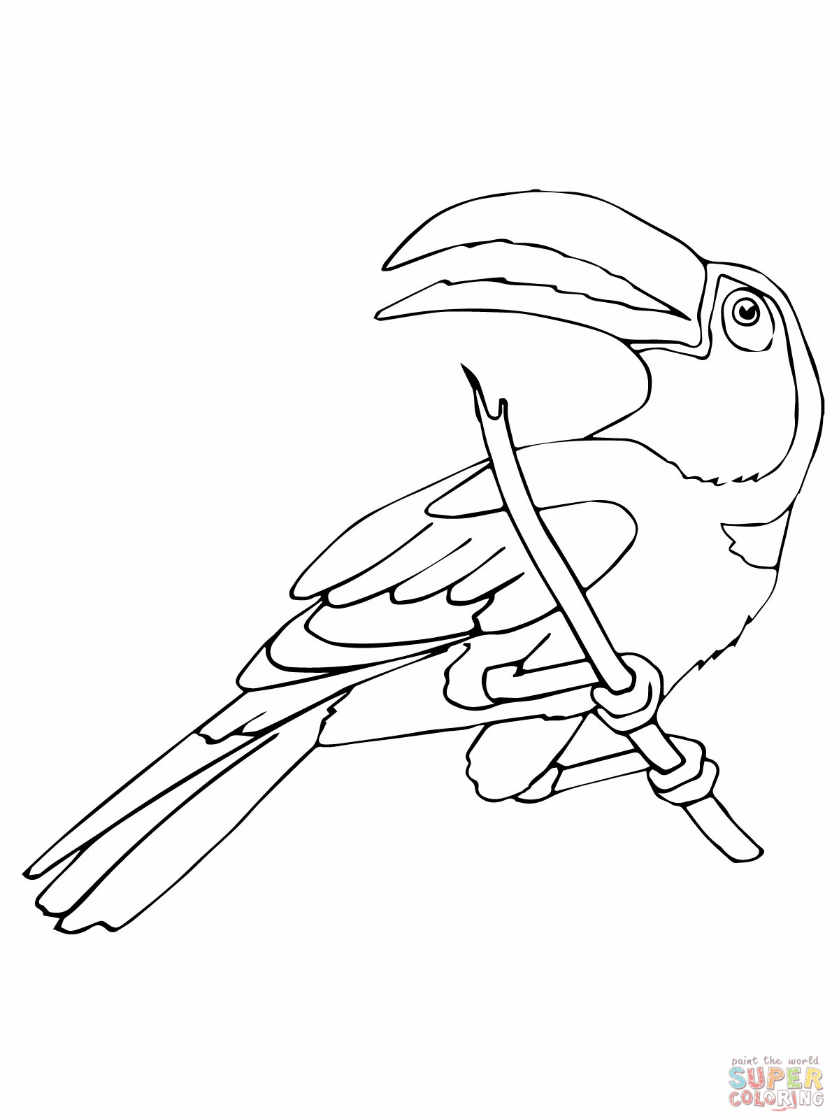 Emerald Toucanet coloring #6, Download drawings