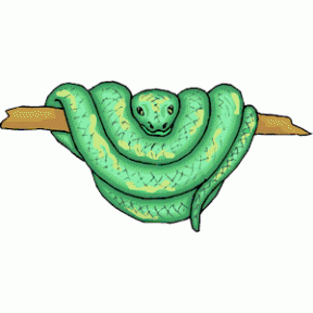 Emerald Tree Boa clipart #11, Download drawings