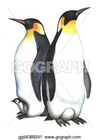 King Emperor Penguins clipart #18, Download drawings