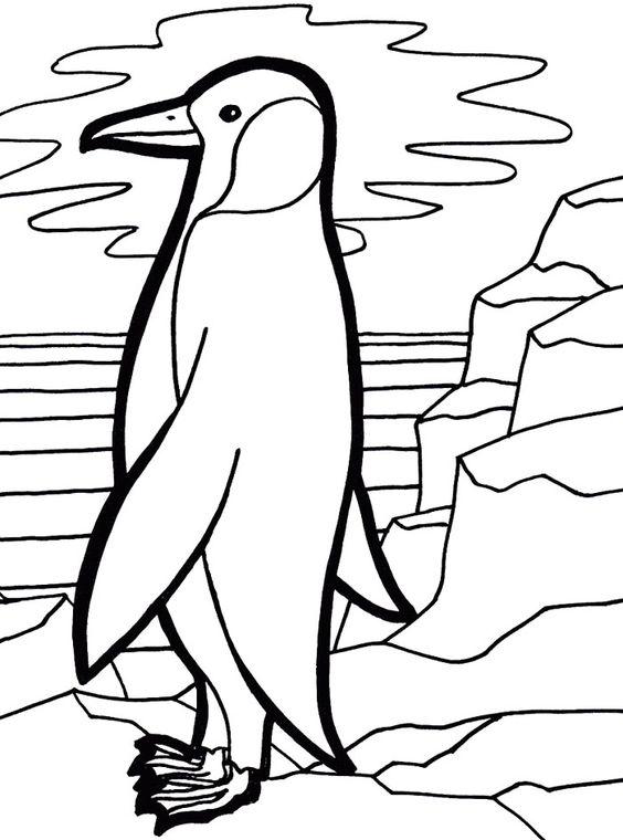 Emperor Penguin coloring #11, Download drawings