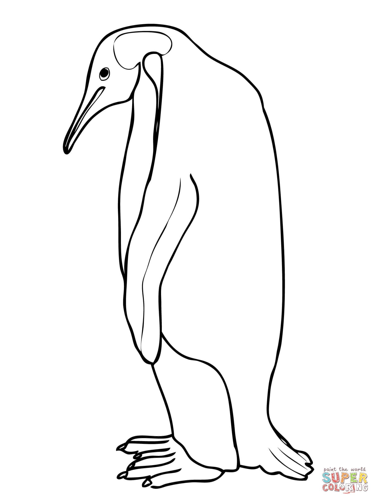 Emperor Penguin coloring #12, Download drawings