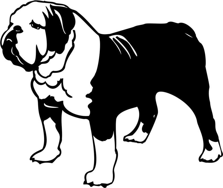 English Bulldog clipart #19, Download drawings