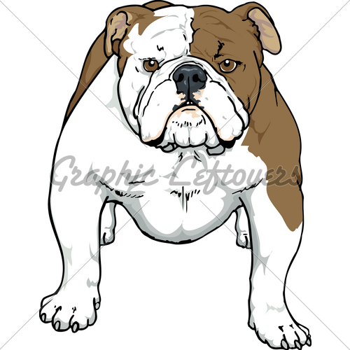 English Bulldog clipart #11, Download drawings