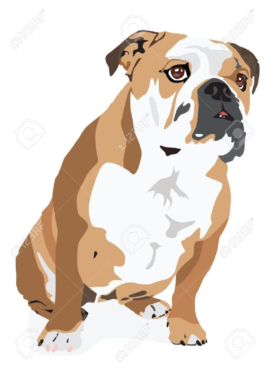 English Bulldog clipart #6, Download drawings