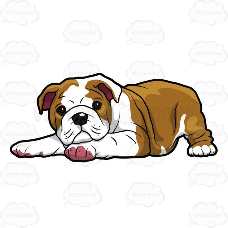 English Bulldog clipart #20, Download drawings
