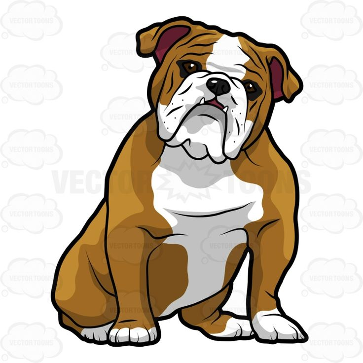English Bulldog clipart #9, Download drawings