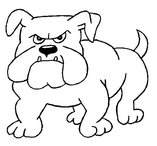 English Bulldog coloring #9, Download drawings