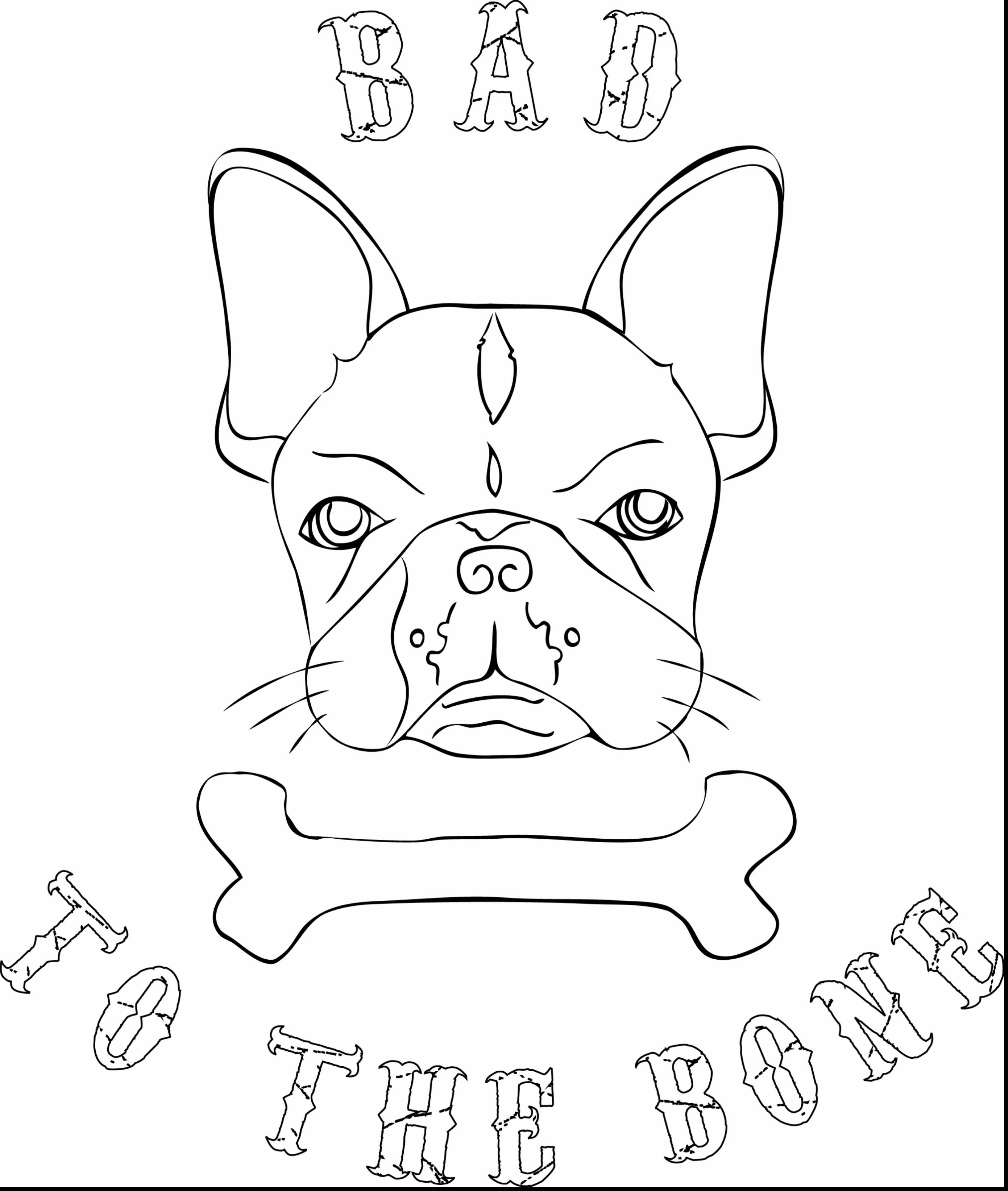 English Bulldog coloring #2, Download drawings