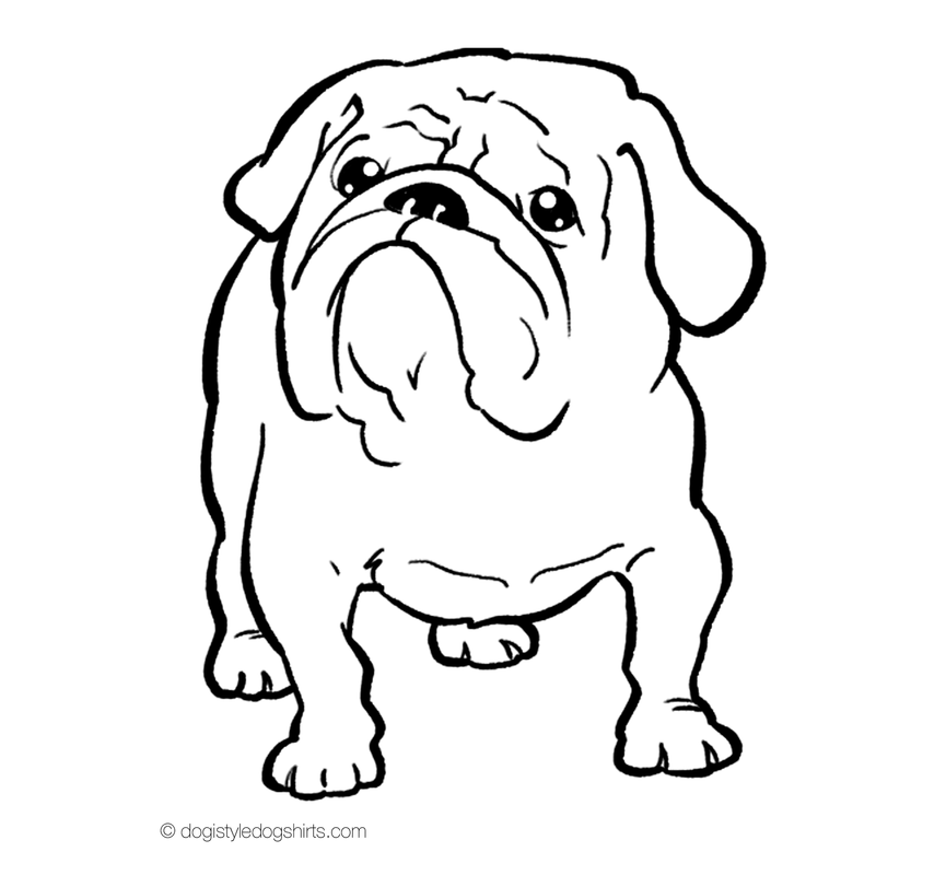 English Bulldog coloring #16, Download drawings