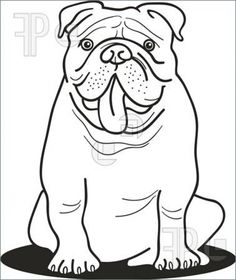 English Bulldog coloring #6, Download drawings