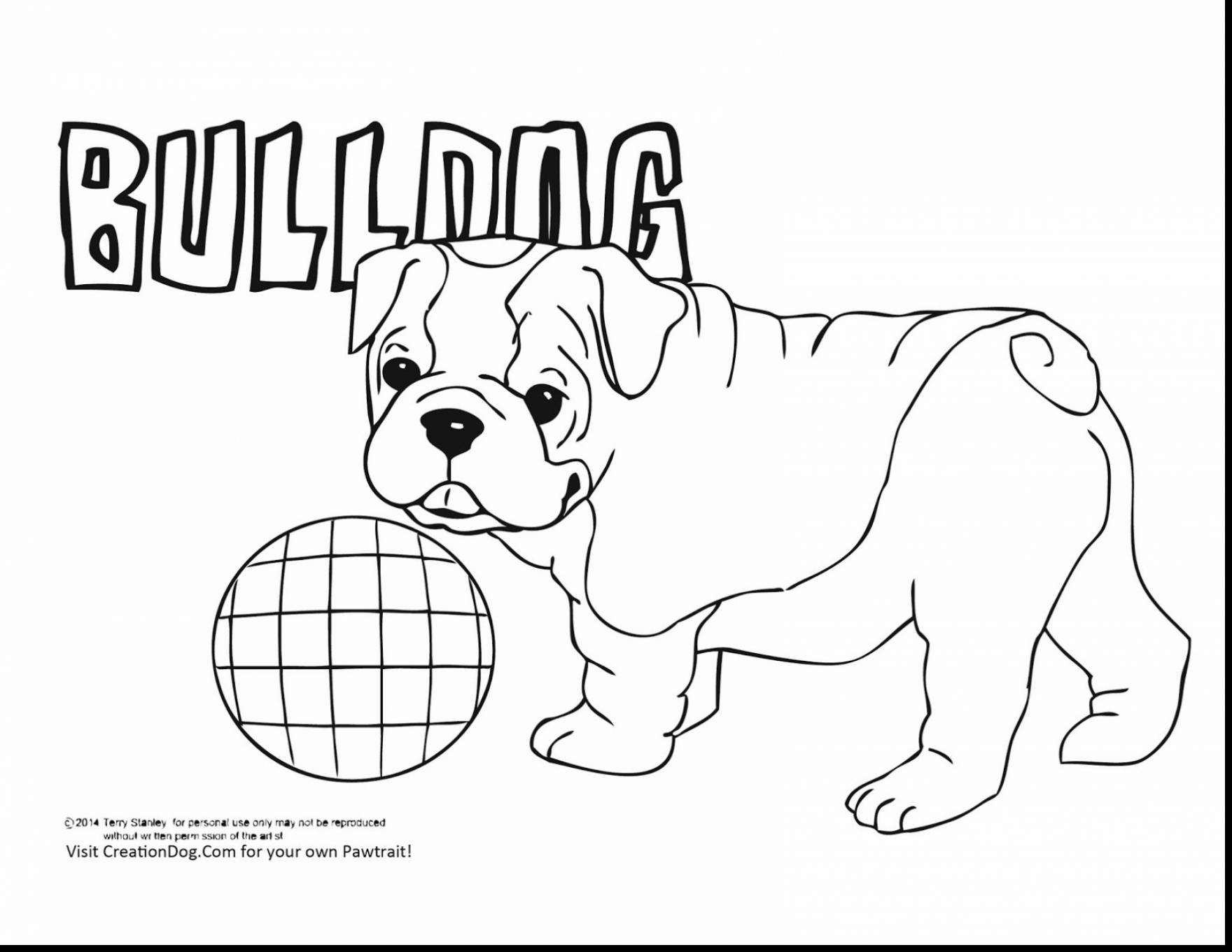 English Bulldog coloring #7, Download drawings