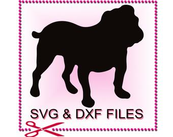English Bulldog svg #168, Download drawings
