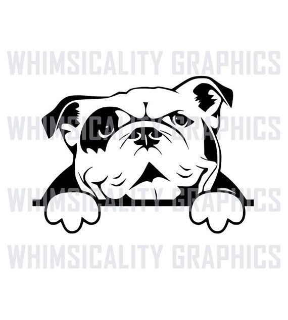 English Bulldog svg #167, Download drawings