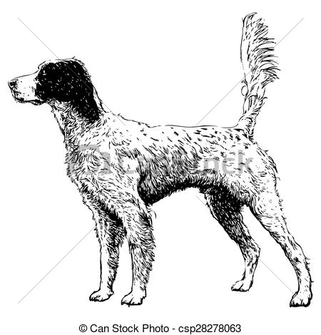Setter clipart #6, Download drawings