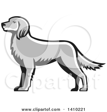 English Setter clipart #1, Download drawings