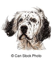 English Setter clipart #18, Download drawings