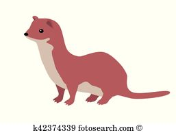 Ermine clipart #6, Download drawings