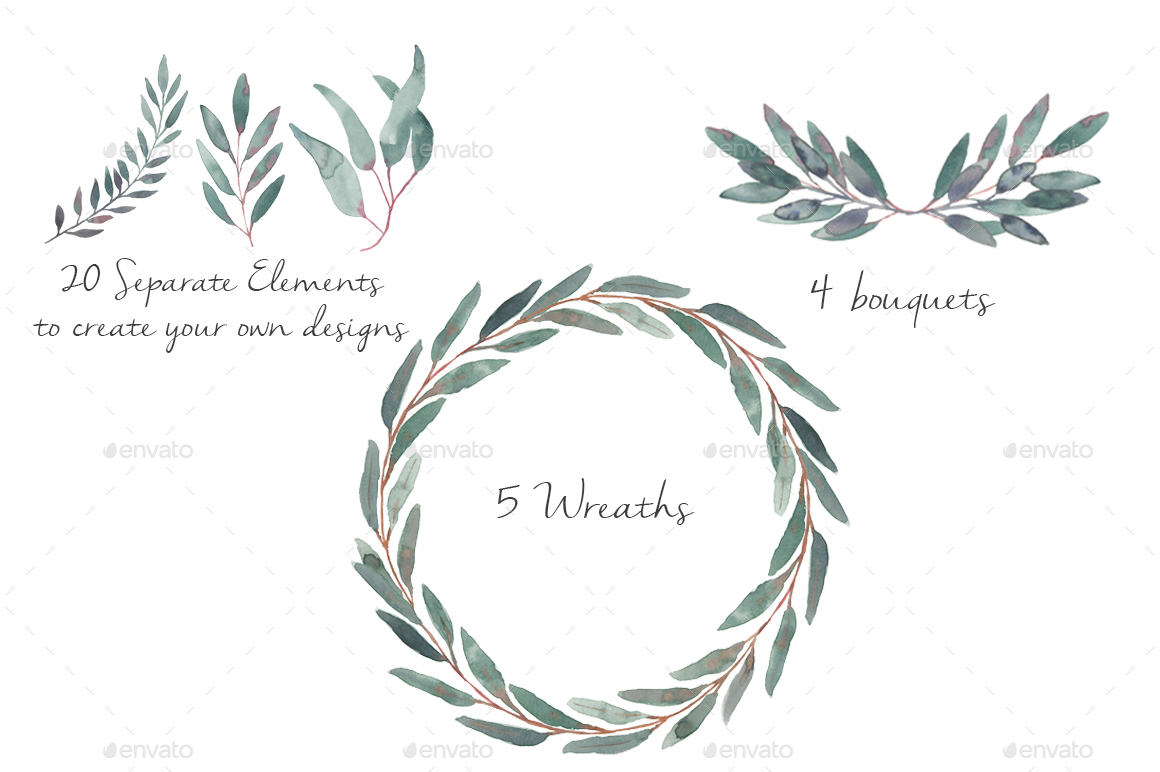 Eucalyptus clipart #3, Download drawings