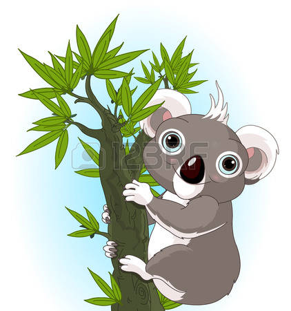 Eucalyptus clipart #6, Download drawings