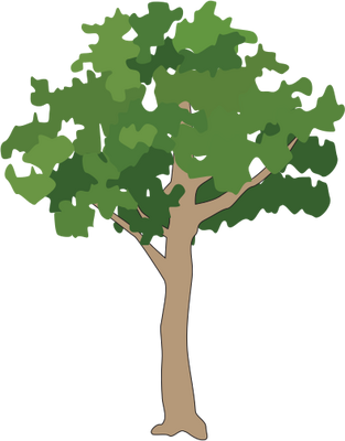 Rainforest svg #19, Download drawings