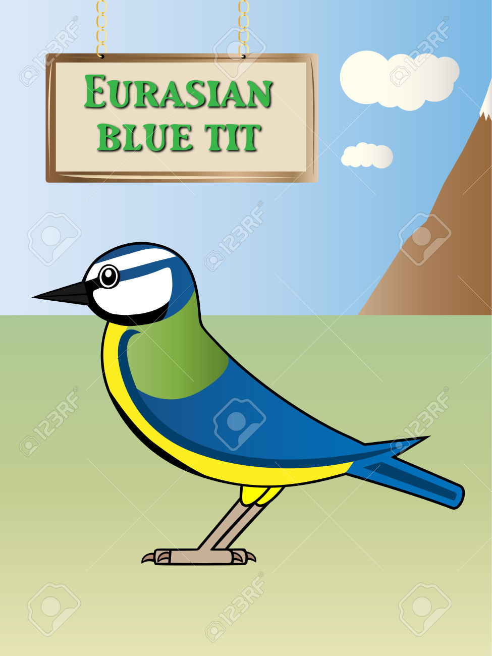 Eurasian Blue Tit clipart #4, Download drawings