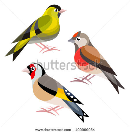 Eurasian Siskin clipart #6, Download drawings