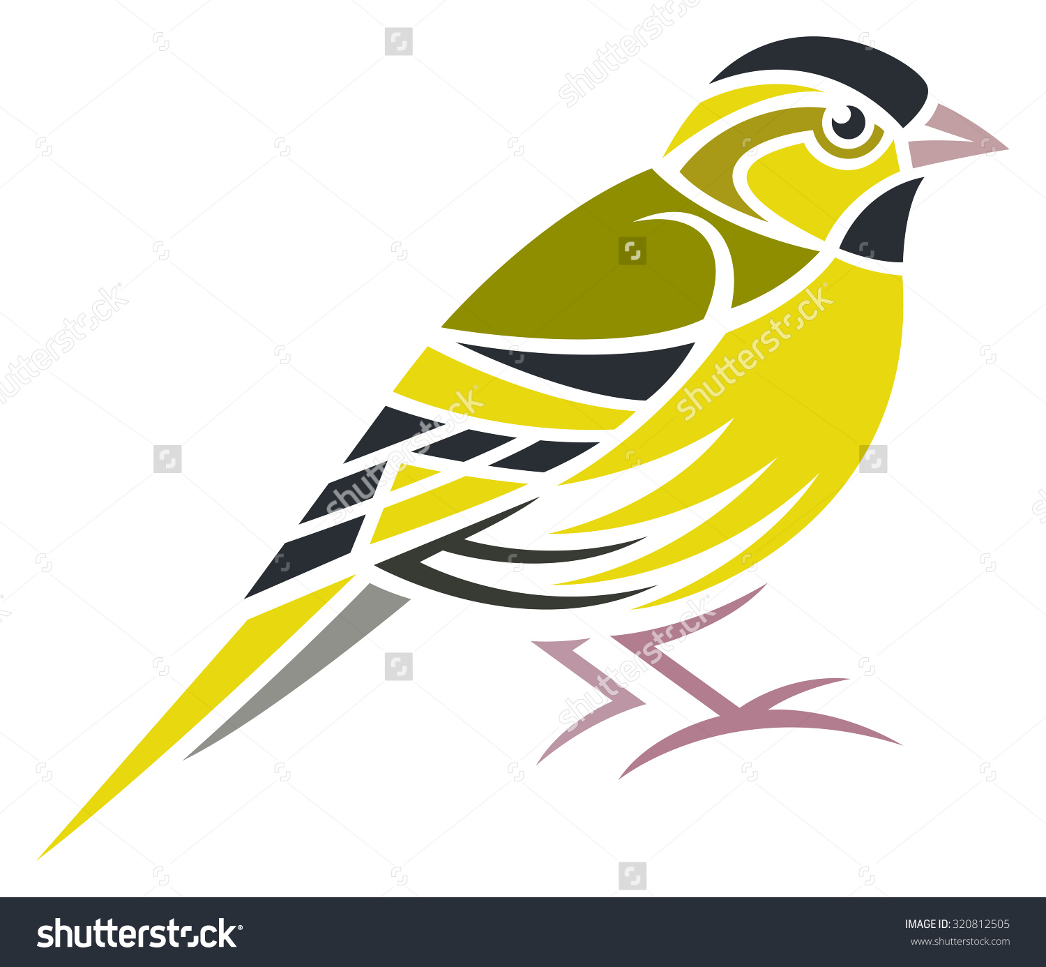 Eurasian Siskin clipart #3, Download drawings