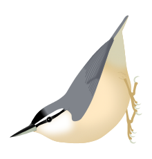 Freshwater Bird svg #2, Download drawings