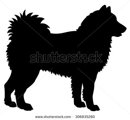 Eurasier clipart #10, Download drawings