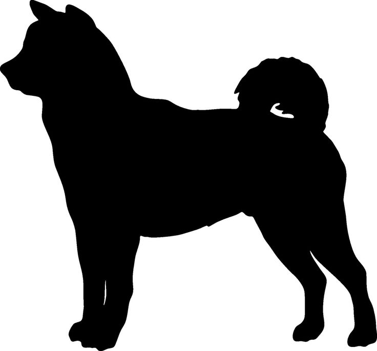Eurasier clipart #3, Download drawings