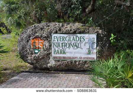 Everglades National Park clipart #13, Download drawings