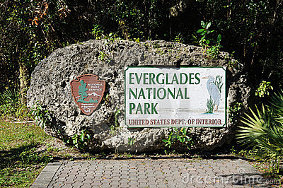 Everglades National Park clipart #3, Download drawings