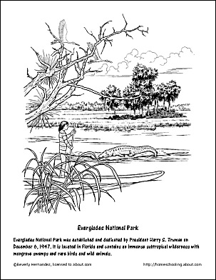 Everglades National Park coloring #5, Download drawings