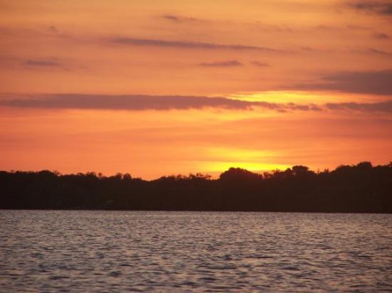 Everglades National Park svg #2, Download drawings