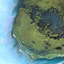 Everglades National Park svg #19, Download drawings