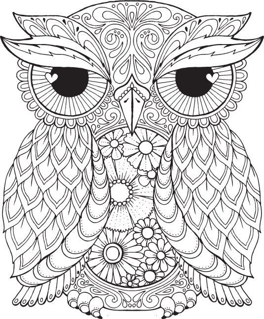 Owlet coloring #15, Download drawings