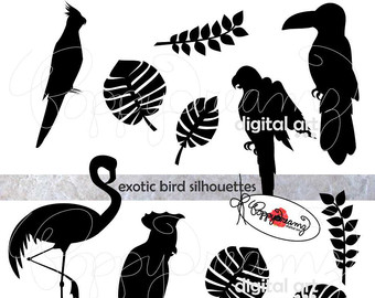 Exotic clipart #12, Download drawings