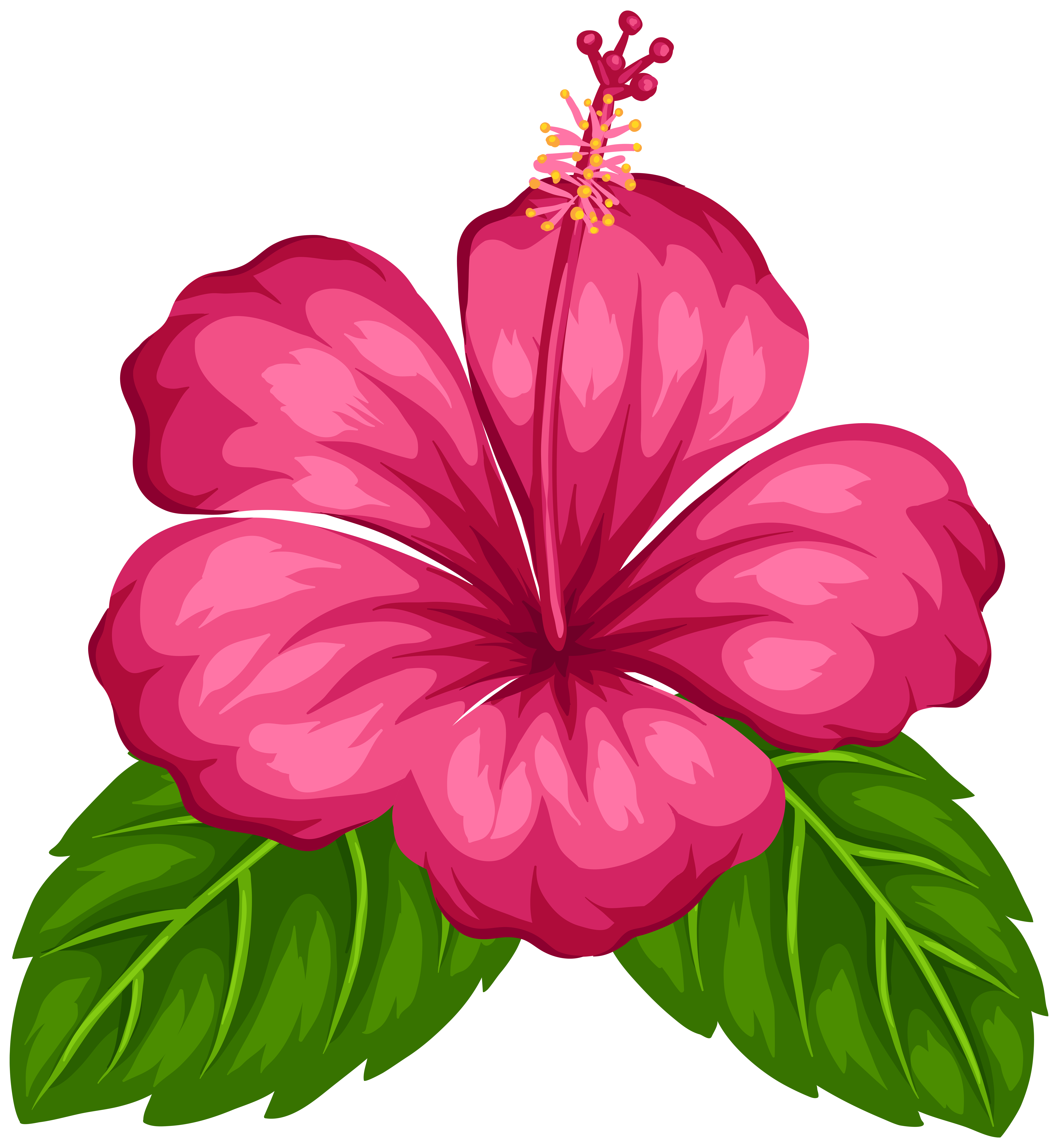 Exotic clipart #5, Download drawings