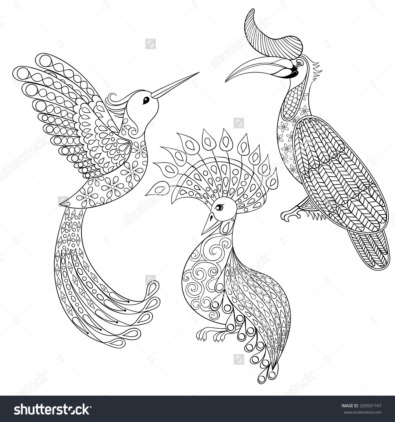 Hornbill coloring #15, Download drawings