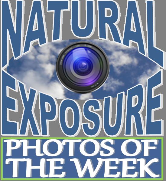 Exposure clipart #18, Download drawings