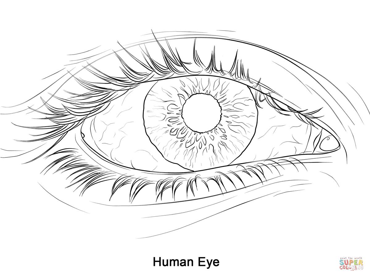 Eye coloring #14, Download drawings