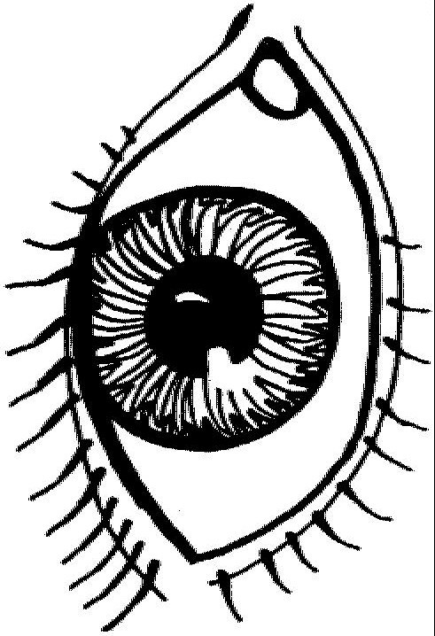 Eys coloring #13, Download drawings