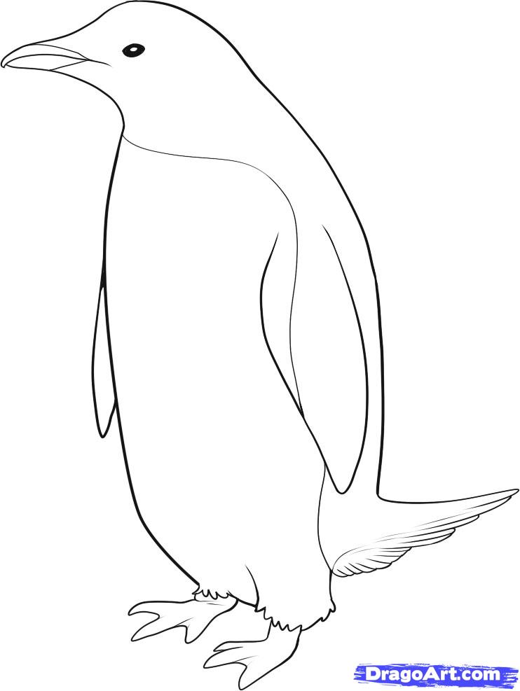 King Emperor Penguins coloring #5, Download drawings
