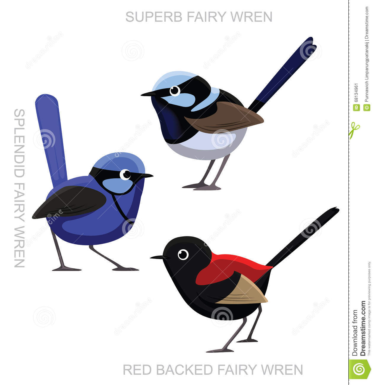 Fairy-wren clipart #20, Download drawings