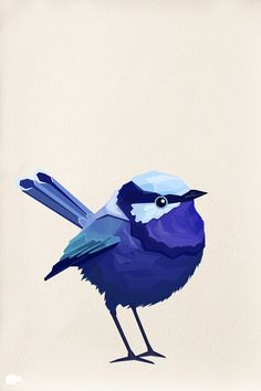 Fairy-wren clipart #18, Download drawings