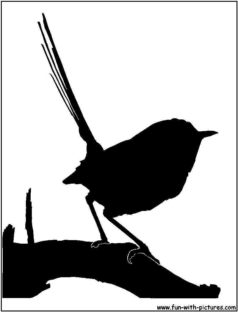 Fairy-wren clipart #15, Download drawings