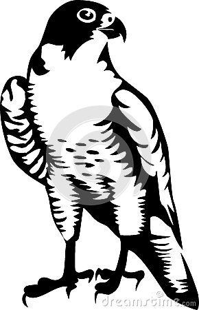 Falcon clipart #3, Download drawings