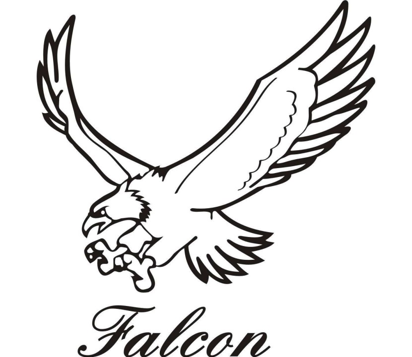 Falcon clipart #19, Download drawings