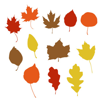 fall leaves svg #648, Download drawings