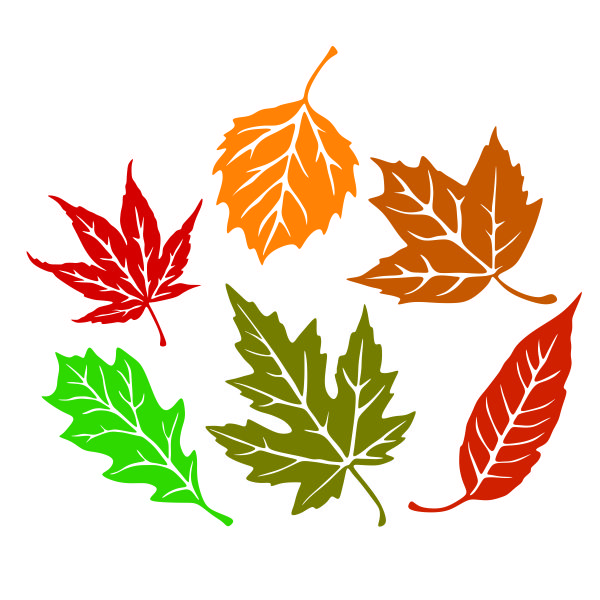 fall leaves svg #656, Download drawings